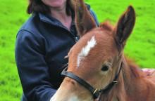 Gill&foal